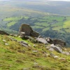 Dartmoor Tour